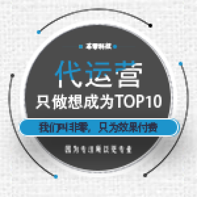 TOP10整站托管